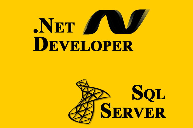 Asp Dot Net training institute in Delhi