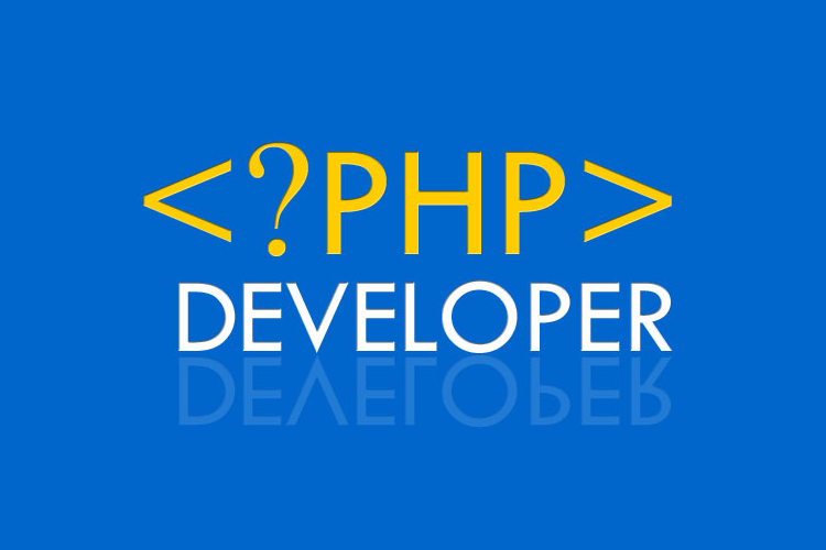 PHP training institute in  delhi